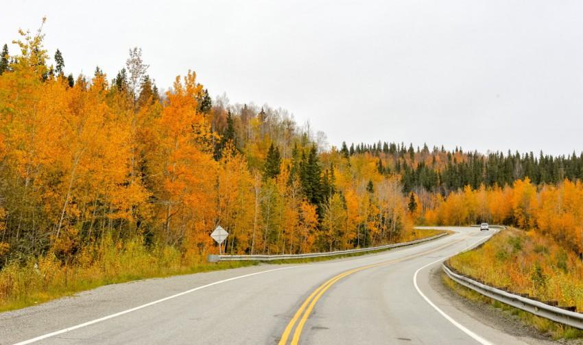 秋季的自然风光:马路