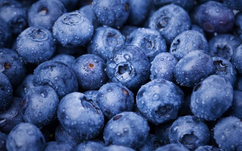 湛蓝的蓝莓