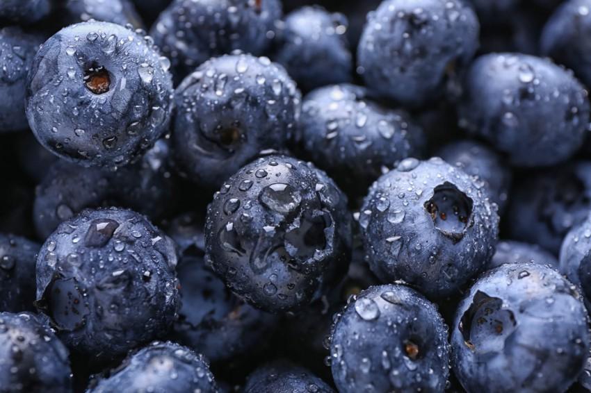 水灵灵的蓝莓